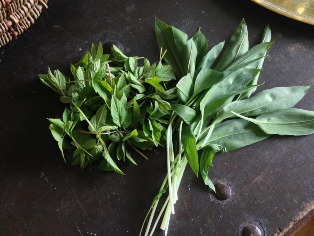 To klassikere: skvalderkål og ramsløg. Ukrudt for de fleste og en komplet uudnyttet ressource. Brug ramsløgen alle de steder, hvor du kunne forestille dig at forårsløg, purløg, salatløg kunne være godt. Eller lav en pesto af den. Brug skvalderkålen som et grønt suplement i en gryderet eller de steder du ville have brugt spinat.