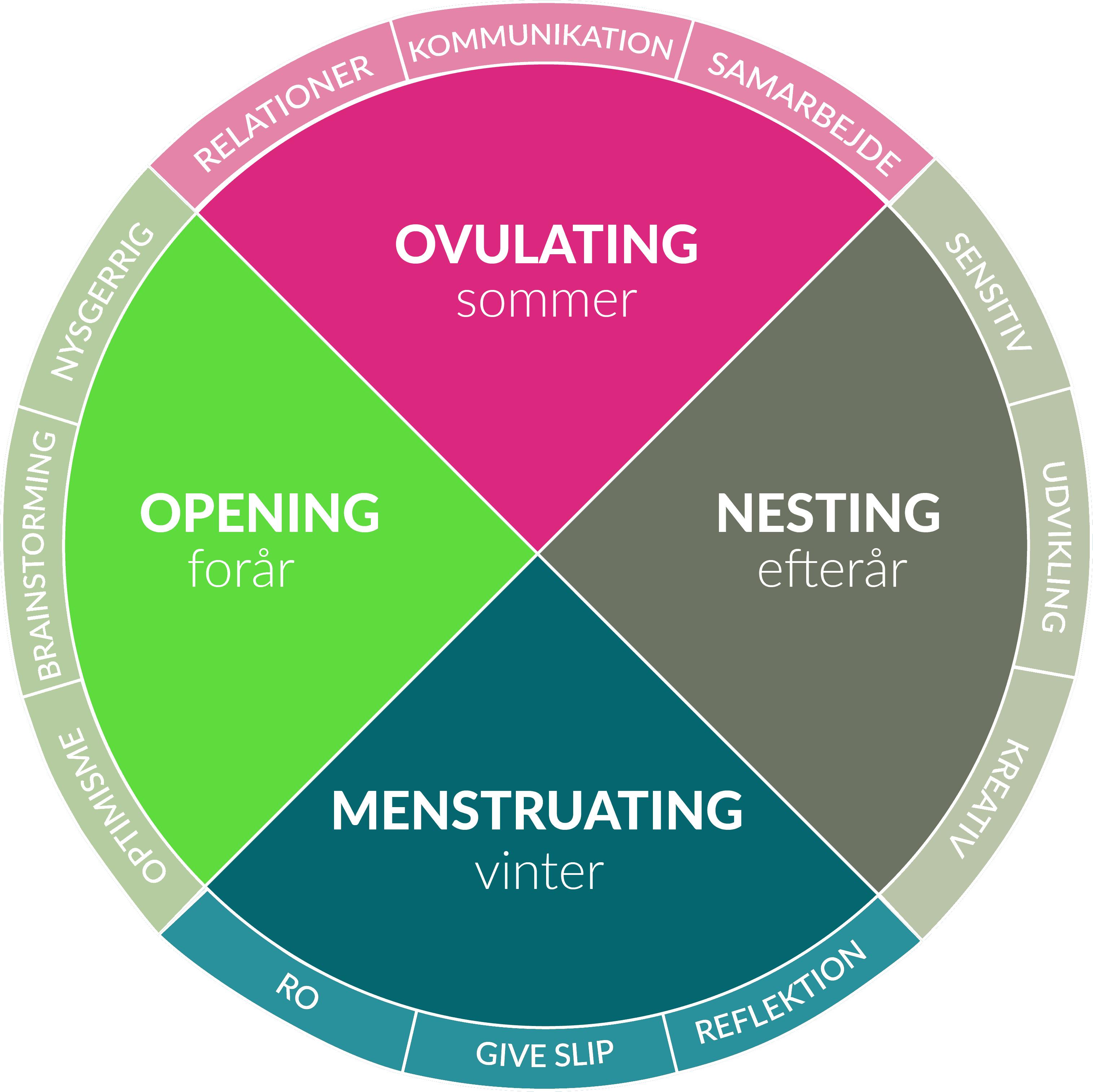 cyklus menstruation